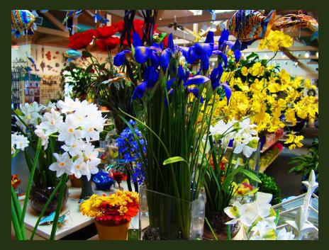 screen-shot-2011-06-27-at-1-39-13-pm